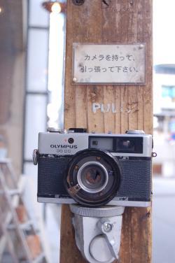 DSC_0532_convert_20111011141052.jpg