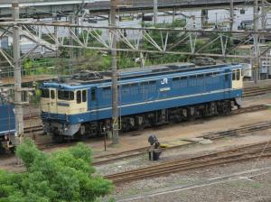 EF651137(高)