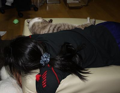 死んだように寝てる。