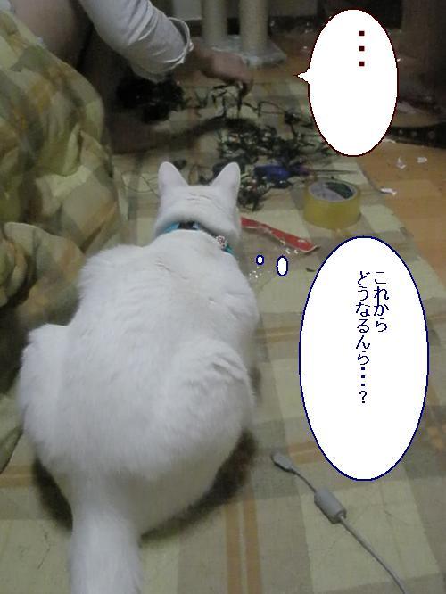 200812235.jpg