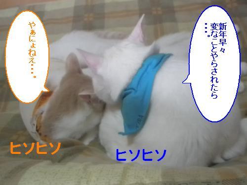 200901017.jpg