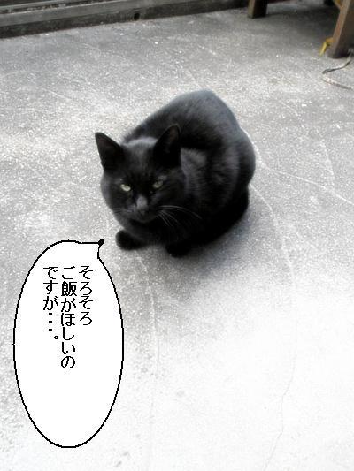 200901038.jpg