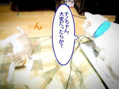 200901107.jpg