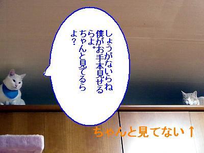 200901117.jpg