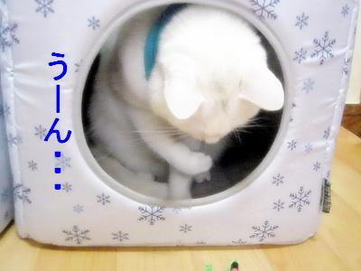200901123.jpg
