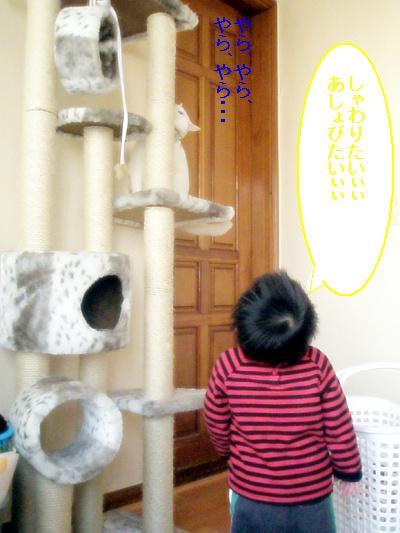 20090206006.jpg