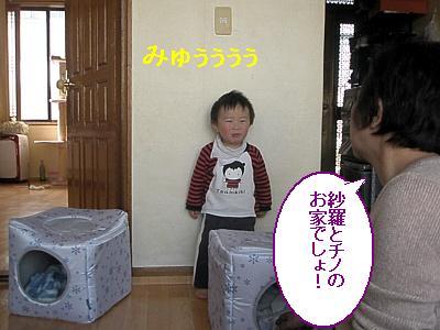 20090206009.jpg