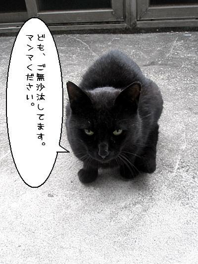 20090418004.jpg