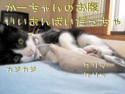 200907120029 copy