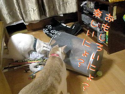 200907270014 copy