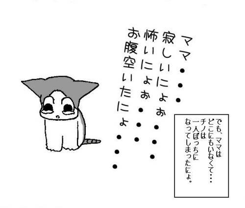 chinob3_convert_20090501132620.jpg