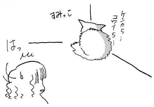 fufushara4_convert_20090208150151.jpg