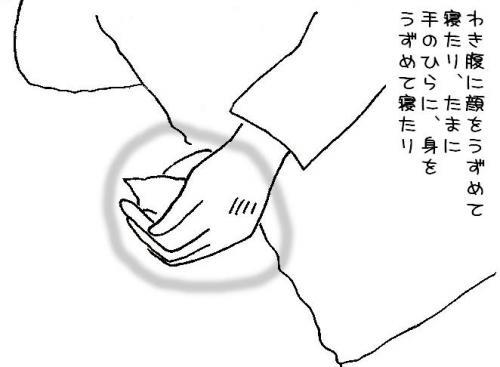 kame+08_convert_20090524194202.jpg
