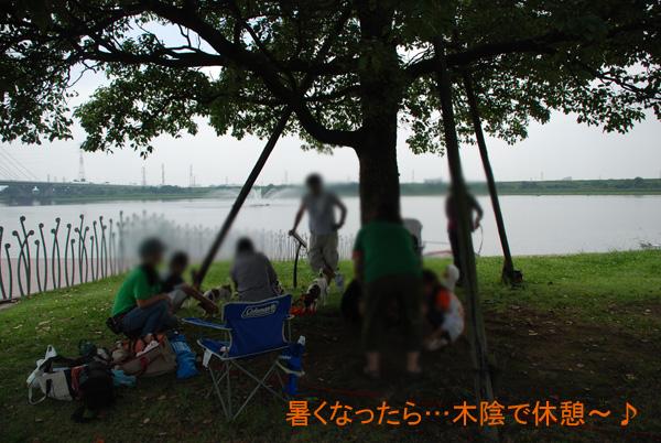 DSC_4682.jpg