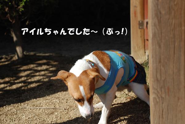 DSC_6588.jpg