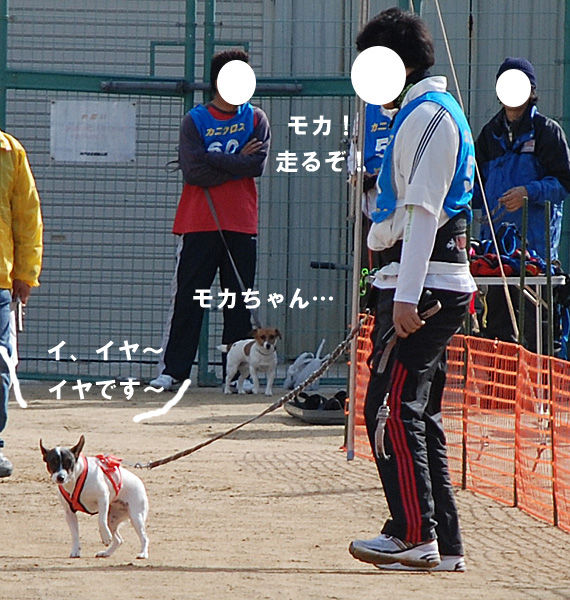 DSC_7595.jpg