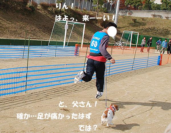DSC_7616.jpg
