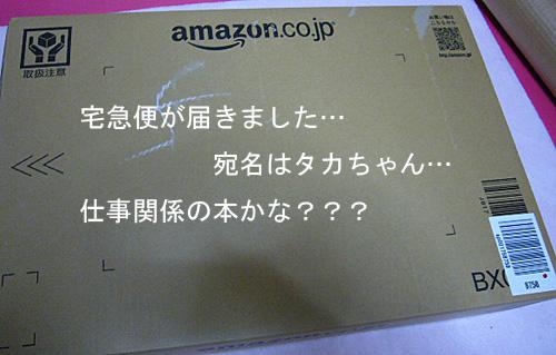 P1060618.jpg
