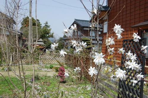 2008_0415_125409AA.jpg