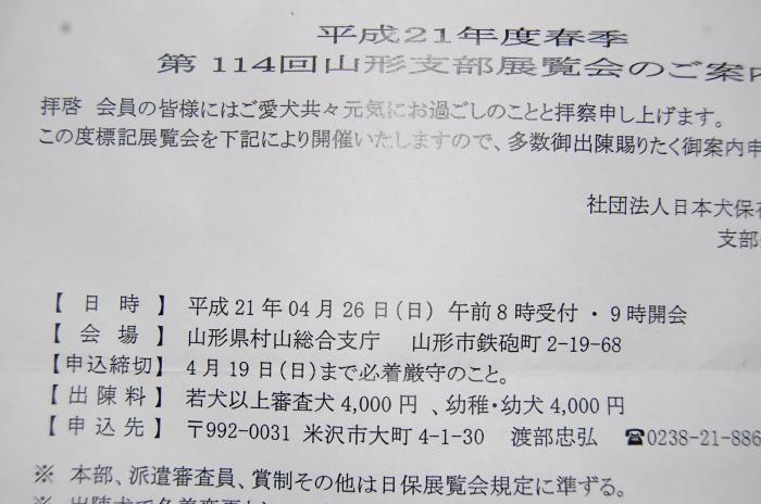 10_20090320214332.jpg