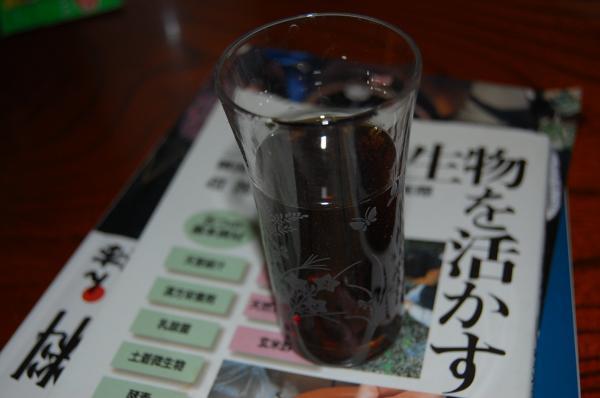 10_20091116211233.jpg
