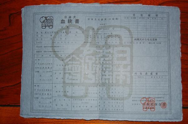 2_20091109211848.jpg