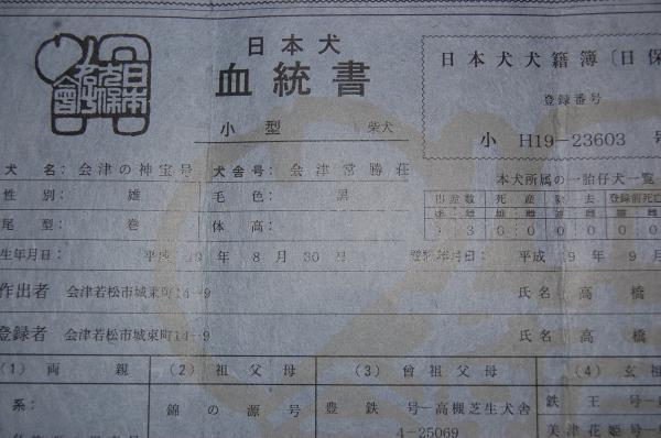 3_20090113214836.jpg