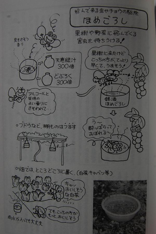 9_20091116210042.jpg