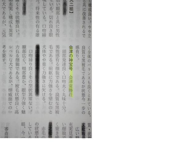 snap_shiba830_20098572111.jpg