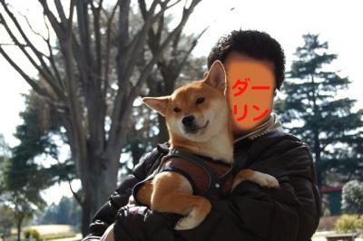 3_20110309195957.jpg