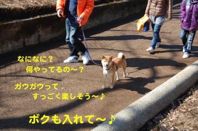 DSC_0126_20110217001613.jpg