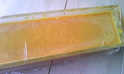 型に入れたレッドパームオイル石けん0001