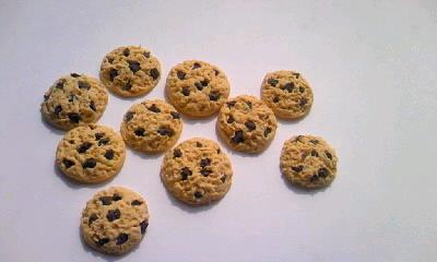 チョコチップクッキー0001