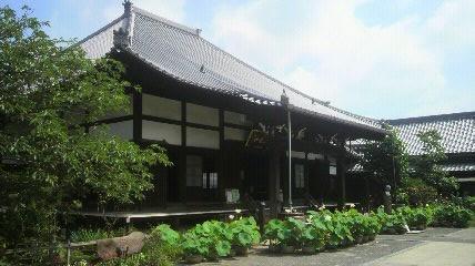 知多西国13番洞雲寺