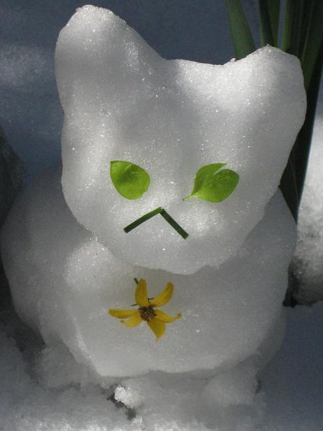 雪猫まつり 003