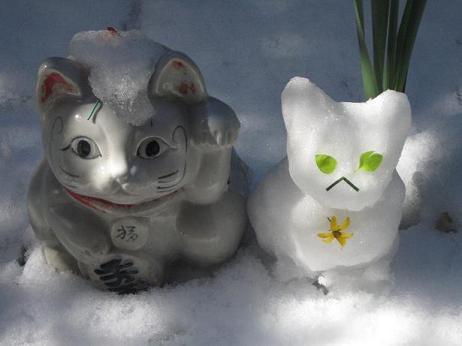 雪猫まつり 002