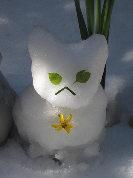 雪猫まつり 008