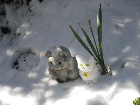 雪猫まつり 004