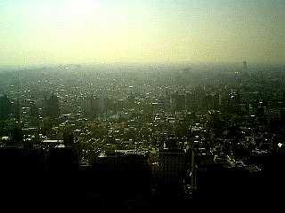 都庁から感じる地球