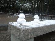 2012_0219雪0049