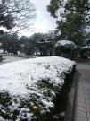 2012_0219雪0044
