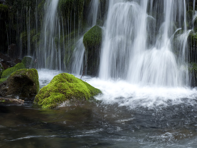 早春の元滝