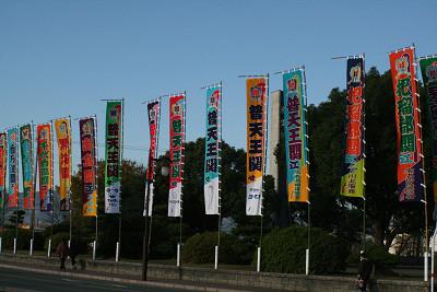 20081231.jpg