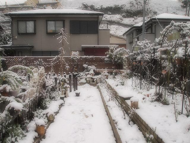 022雪景色