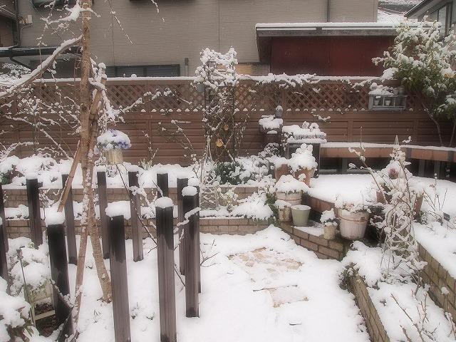 019雪景色