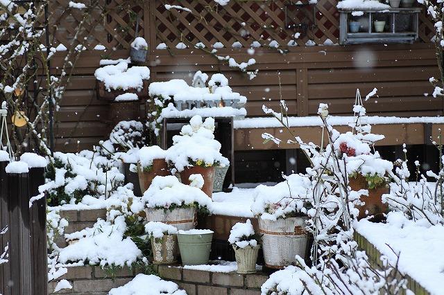 IMG_6089雪景色