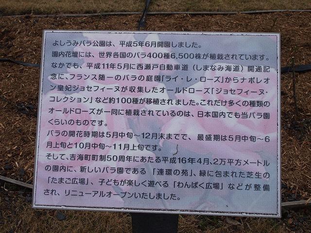 107よしうみバラ公園