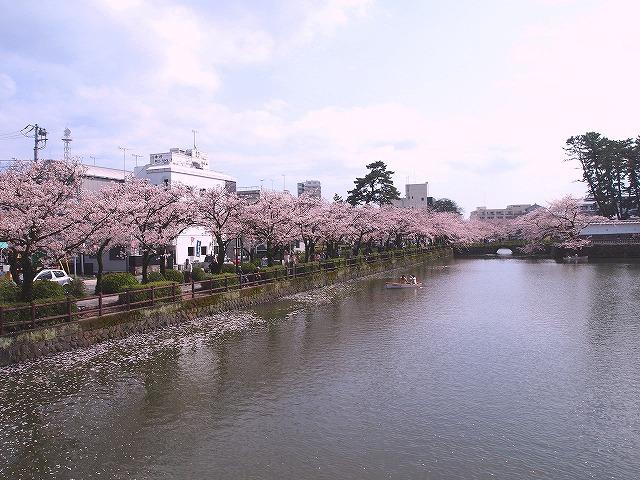 048小田原城お堀端
