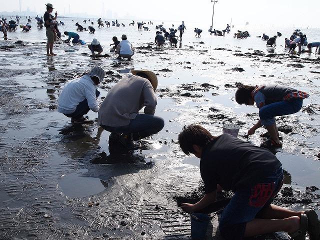 099木更津潮干狩り