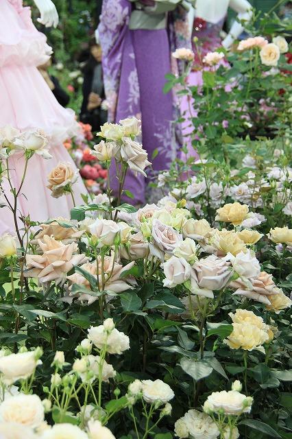 IMG_4095国際バラとガーデニングショー